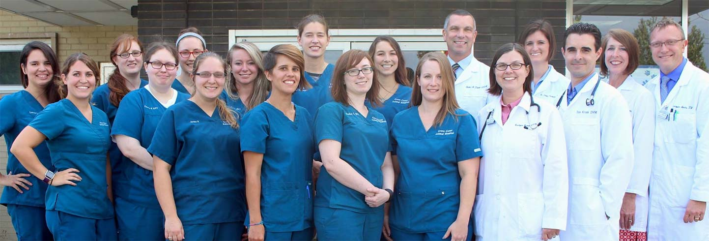 Saint Louis veterinarians